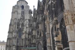 h__wiede_-_katedra