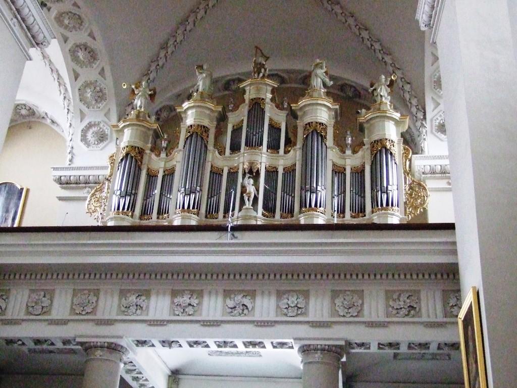 80._katedra
